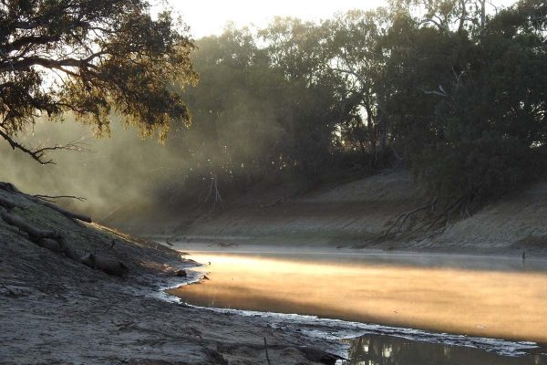 Darling River - photo thanks to Trilby Station